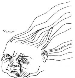 Illustration Flame Vine